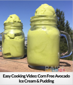 Corn Free Avocado Pudding GF V T8 RSF